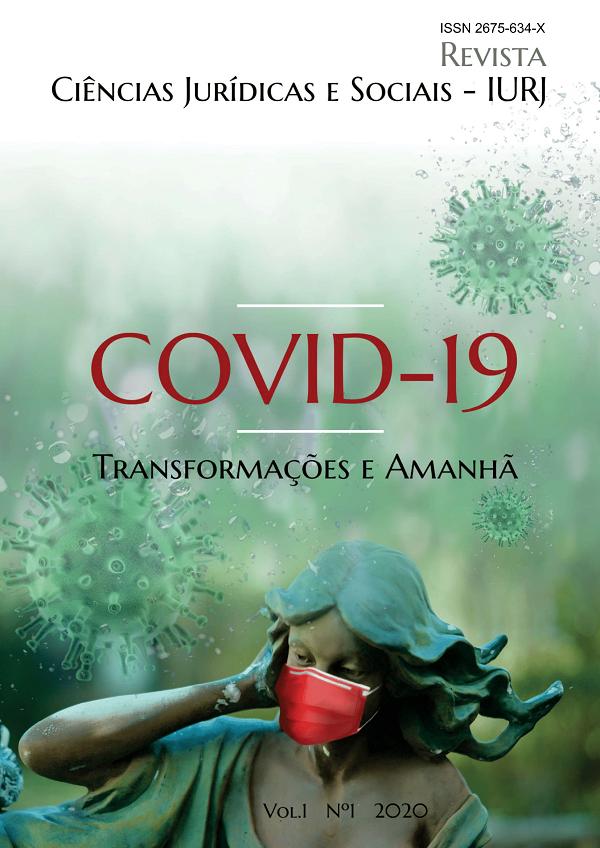 Visualizar v. 1 n. 1 (2020): COVID-19 Transformações e Amanhã